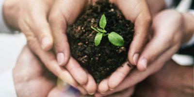 Collaboration environnementale des employés, pour la page Environnement